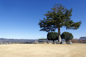笠間つつじ公園